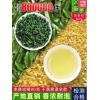 安溪铁观音2021新茶特级浓香型正宗绿茶叶散装礼盒装小包春茶500g